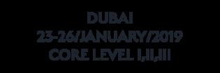 DUBAI_JAN_2019